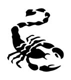 Tribal scorpion tattoo isolated on white. Vector Stock Images