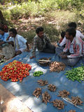 Tribal villagers bargain for vegetables Royalty Free Stock Images