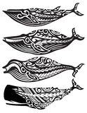 Tribal Whales Stock Photography