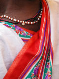 Tribal woman with jewelry and colorful sari Stock Images