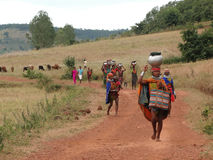 Tribal women carry goods  on their heads Stock Image