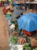 Tribal women, shaded by umbrella. ORISSA,  INDIA - Nov 12 -Tribal women, shaded by umbrellas, sell vegetables  in weekly market  on Nov 12, 2009 in Ankadeli Stock Photography