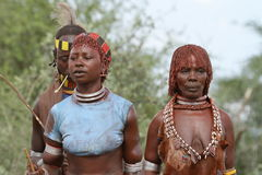 Free Tribe Of Hamar In The Omo Valley Of Ethiopia Royalty Free Stock Images - 93267809
