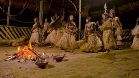 Tribe people dancing. Aboriginal culture and art show indigenous performing dance around fire traditional event in amazonian jungle by night in Ecuador stock video