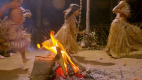 Tribe People Dancing. Aboriginal Culture And Art Show Indigenous Running Around Fire Traditional Event In Amazonian Jungle By Night In Ecuador stock video