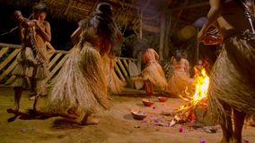 Tribe people dancing. Indigenous performing dance around the fire traditional event in amazonian jungle at night in Ecuador stock video footage