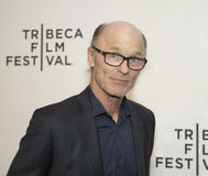2015年Tribeca电影节 库存照片
