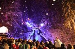 Triberg冬天雪 库存照片