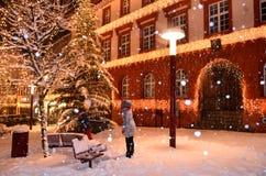 Triberg冬天雪 免版税库存图片