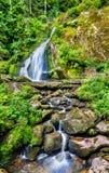 Triberg cade, una di più alte cascate in Germania Immagine Stock Libera da Diritti