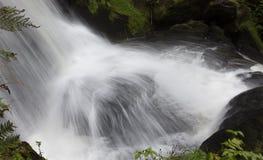 Triberg cade, una di più alte cascate in Germania Fotografia Stock Libera da Diritti
