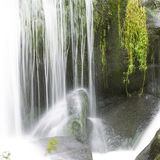 Triberg cade, una di più alte cascate in Germania Fotografia Stock