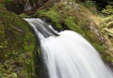 Triberg cade, una di più alte cascate in Germania Fotografie Stock