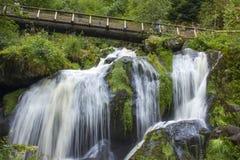Triberg faller i regionen för den svarta skogen, Tyskland Arkivbild