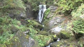 Triberg siklawy w Czarnym lesie zdjęcie wideo