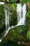 Triberg vattenfall i den svarta skogen, Germany-16 Arkivfoton