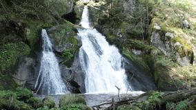 Triberg vattenfalldetalj arkivfilmer