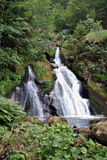 Triberg waterfall Stock Photography