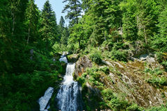 Triberg Waterfalls in the Black Forest, Germany-27 Royalty Free Stock Photography