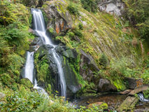 Triberg waterfalls and forest around Royalty Free Stock Photo