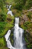 Triberg waterfalls, Germany royalty free stock image