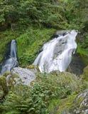 Triberg Waterfalls in green vegetation Stock Photos
