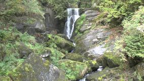 Tribergwatervallen in het Zwarte Bos stock videobeelden