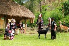 Tribo do monte de Akka imagens de stock royalty free
