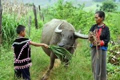 Tribo do monte de Lahu fotos de stock