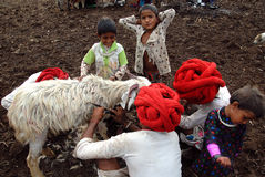 Tribos de Banjara em India foto de stock royalty free