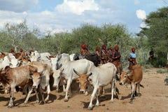 Tribu de Hamar dans la vallée d'Omo de l'Ethiopie Images stock