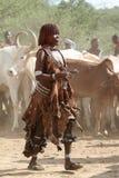 Tribu de Hamar dans la vallée d'Omo de l'Ethiopie Photos libres de droits