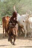 Tribu de Hamar dans la vallée d'Omo de l'Ethiopie Photographie stock libre de droits