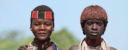 Tribu de Hamar dans la vallée d'Omo de l'Ethiopie Images libres de droits
