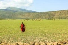 Tribu joven del Masai Imágenes de archivo libres de regalías
