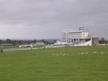 Tribuna dell'ippodromo di Epsom. fotografie stock libere da diritti