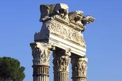 Tribuna Romanum Roma Fotografie Stock Libere da Diritti
