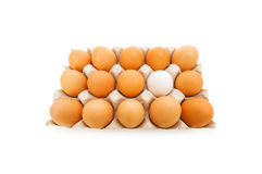 Tribune uit menigteconcept met eieren Royalty-vrije Stock Foto