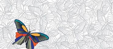 Tribune uit! Vectorbanner met vele vlinders vector illustratie