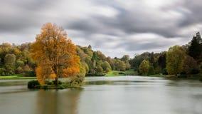 Tribunes van de brand de oranje boom alleen op een eiland in een meer Royalty-vrije Stock Foto