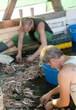 Fishermen sorting out the catch on a deck of a trawler boat. Tribunj, Croatia - August, 24, 2018: Two fishermen sorting out the catch on a deck of a trawler boat stock photography