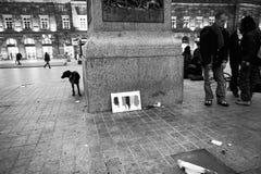 Tribut zu Brüssel-Bombardierungen in Straßburg, Frankreich Stockfotografie
