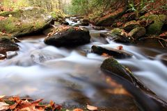 Tributary Stream Stock Image