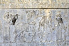 Tribute bearers bas-relief in Apadana Palace, Fars Province, Per Royalty Free Stock Image