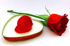 A tribute to Valentine`s Day. royalty free stock images