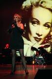 Tributo a Marlene Dietrich Immagine Stock