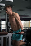 Triceps And Chest Exercise on Parallel Bars. Young Muscular Fitness Bodybuilder Doing Heavy Weight Exercise For Triceps And Chest on Parallel Bars In The Gym Stock Photography