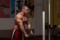 Triceps Exercise Stock Photos