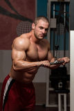 Triceps Exercise Royalty Free Stock Photography