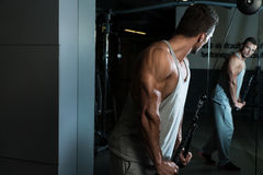 Triceps Exercise. Young Man On The Triceps Pulldown Weight Machine At A Health Club royalty free stock photography